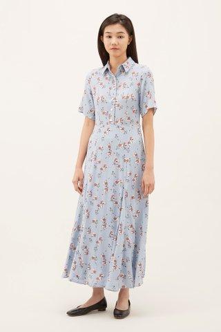 Romelda Shirtdress