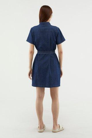 Paola Denim Dress